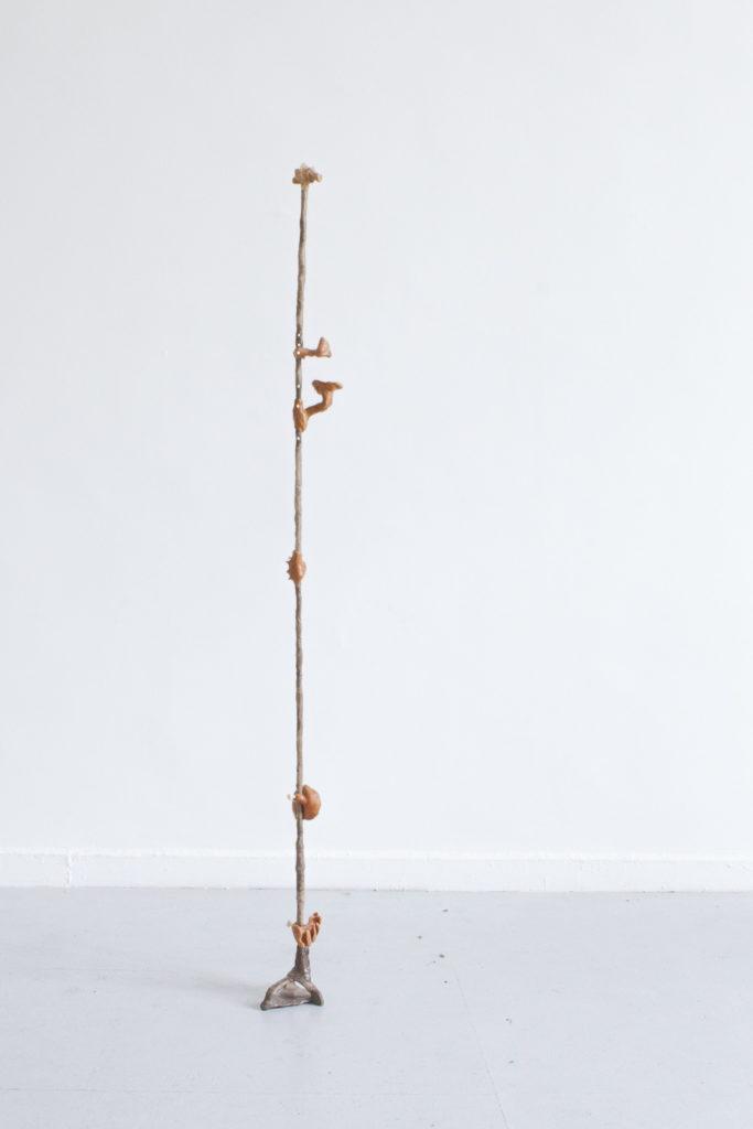 Der zarte Kommunist, 2018, Kunststoffgemisch, Mehl, Kaffee, Chili, Holz, 210x18x16cm
