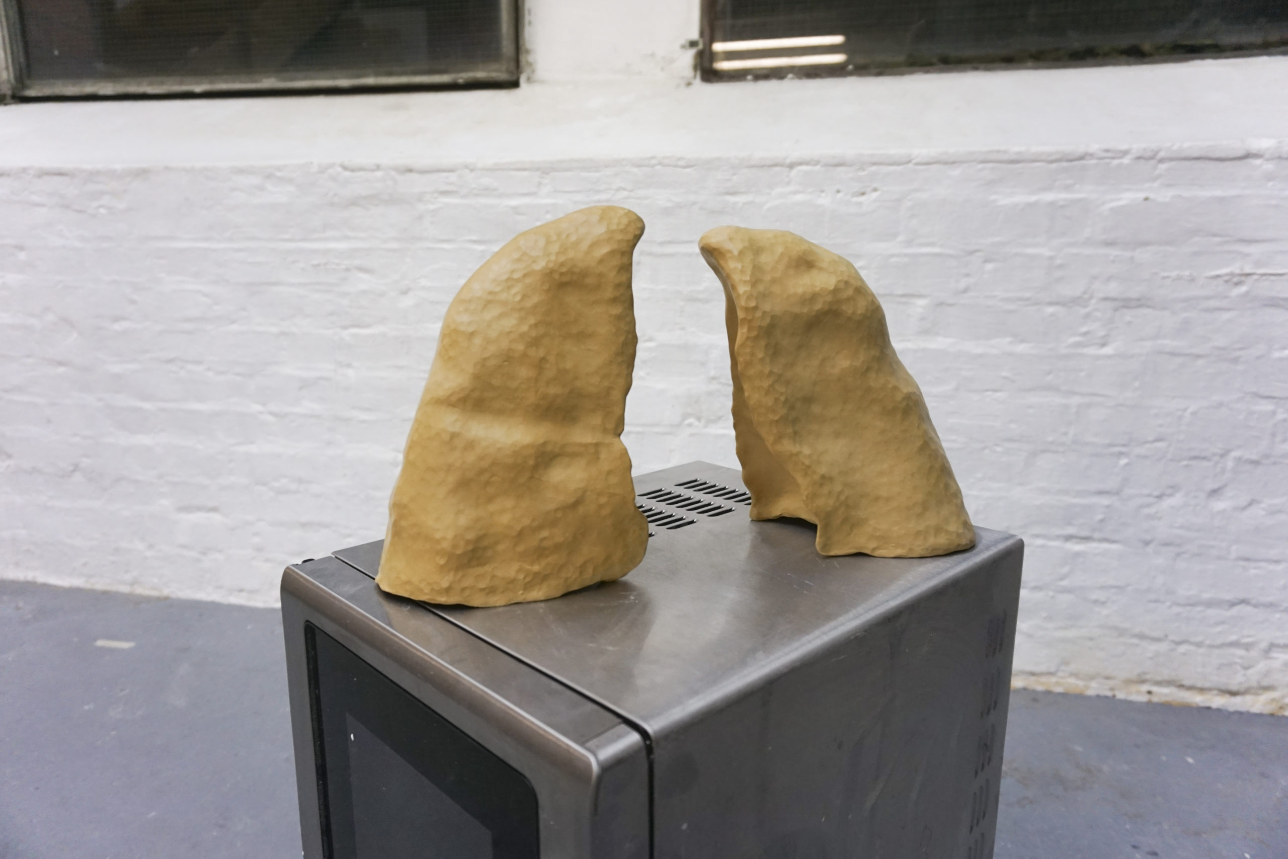 Mona Leiß - Lungen, 2018, Ton